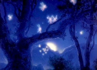 FairyFireflys