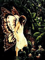 FairyWade