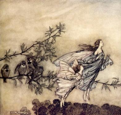 fairyWbirds